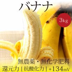 バランゴンバナナ 3kg フェアトレード 無農薬・無化学肥料・糖度28.0%・還元力+134mV