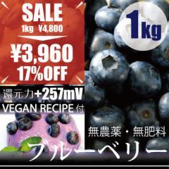 ブルーベリー1kg ヴィーガンレシピ付き 自然栽培(無農薬・無肥料栽培)・千葉県産  還元力+257mV
