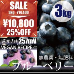ブルーベリー3kg ヴィーガンレシピ付き 自然栽培(無農薬・無肥料栽培)・千葉県産  還元力+257mV