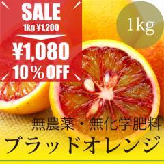 無農薬・無化学肥料 樹上完熟 ブラッドオレンジ 1kg 愛媛県産
