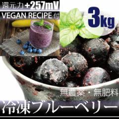 冷凍ブルーベリー 3kg −60℃で冷凍!ヴィーガンレシピDVD付き 千葉県産 自然栽培(無農薬・無肥料)