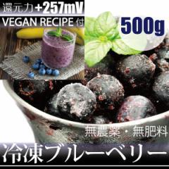 冷凍ブルーベリー 500g −60℃で冷凍!ヴィーガンレシピDVD付き 千葉県産 自然栽培(無農薬・無肥料)