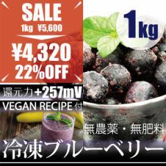 冷凍ブルーベリー 1kg −60℃で冷凍!ヴィーガンレシピDVD付き 千葉県産 自然栽培(無農薬・無肥料)