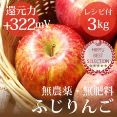 リンゴ ふじりんご 3kg 自然栽培(無農薬・無肥料)青森県産 還元力(抗酸化力)ORP+322mV