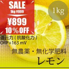 希少! 無農薬レモン 1kg 熊本県産 無農薬・無化学肥料・放射性物質検査済・糖度9.6%・還元力(抗酸化力)+163mV