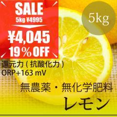 希少! 無農薬レモン 5kg 熊本県産 無農薬・無化学肥料・放射性物質検査済・糖度9.6%・還元力(抗酸化力)+163mV