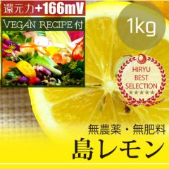島レモン1kg 自然栽培(無農薬・無肥料) レモンドレッシングレシピ付き! 広島県産・還元力(抗酸化力)+166mV