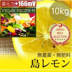 島レモン10kg 自然栽培(無農薬・無肥料) レモンドレッシングレシピ付き! 広島県産・還元力(抗酸化力)+166mV