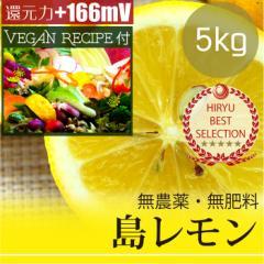 島レモン5kg 自然栽培(無農薬・無肥料) レモンドレッシングレシピ付き! 広島県産・還元力(抗酸化力)+166mV