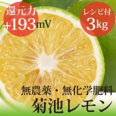 小笠原の菊池レモン3kg 無農薬・無化学肥料 ヴィーガンレシピ付き 還元力(抗酸化力)ORP+193mV