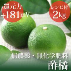 酢橘 すだち 2kg スダチのゲルソンジュースレシピ付き 無農薬・無化学肥料・愛媛県産 還元力(抗酸化力)ORP+181mV