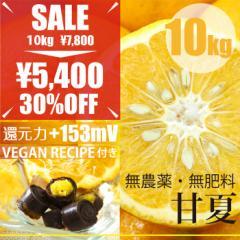 甘夏 あまなつ 10kg 自然栽培(無農薬・無肥料)・広島県産・ボンボンショコラレシピ付