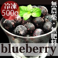 無農薬さらに無化学肥料 冷凍国産ブルーベリー 500g