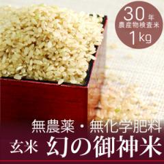【新米】【幻の御神米 玄米1kg】30年産 無農薬・無化学肥料 放射性物質検査済
