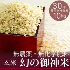 【新米】【幻の御神米 玄米10kg】30年産 無農薬・無化学肥料 放射性物質検査済