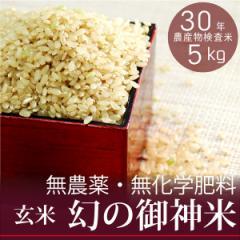 【新米】【幻の御神米 玄米5kg】30年産 無農薬・無化学肥料 放射性物質検査済