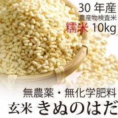 【30年産】無農薬 もち米 玄米 10kg 無農薬・無化学肥料・秋田県産 きぬのはだ