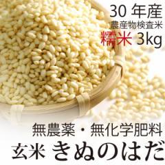 【30年産】無農薬 もち米 玄米 3kg 無農薬・無化学肥料・秋田県産 きぬのはだ