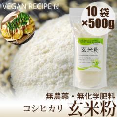 無農薬玄米粉 500g×10袋 VEGANたこやきレシピ付き