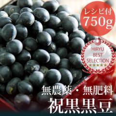 伊藤秀幸さんの黒豆 750g ヴィーガンレシピ付き 自然栽培(無農薬・無肥料) 北海道産