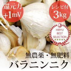 にんにく バラ 3kg黒ニンニクレシピ付き・自然栽培(無農薬・無肥料)・熊本県産・還元力(抗酸化力)+1mV