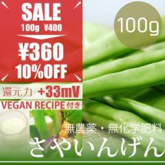【今だけ23%OFF】サヤインゲン 100g ヴィーガンマヨネーズレシピ付き! 無農薬・無化学肥料・熊本県産 卵不使用