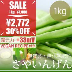 【今だけ23%OFF】サヤインゲン 1kg ヴィーガンマヨネーズレシピ付き! 無農薬・無化学肥料・熊本県産 卵不使用