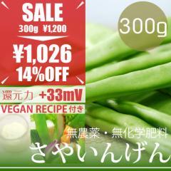 【今だけ23%OFF】サヤインゲン 300g ヴィーガンマヨネーズレシピ付き! 無農薬・無化学肥料・熊本県産 卵不使用