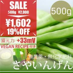 【今だけ23%OFF】サヤインゲン 500g ヴィーガンマヨネーズレシピ付き! 無農薬・無化学肥料・熊本県産 卵不使用