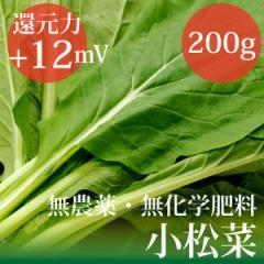 小松菜200g 千葉県産 無農薬・無化学肥料  放射性物質検査済