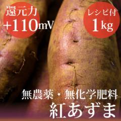 さつまいも 紅あずま 1kg ヴィーガンレシピ付き 無農薬・無化学肥料・千葉県産 還元力(抗酸化力)ORP+110mV