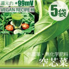 空芯菜 ヨウサイ 150g×5袋  ゲルソンジュースレシピ付き  無農薬・無化学肥料・千葉県産 還元力(抗酸化力)+99mV
