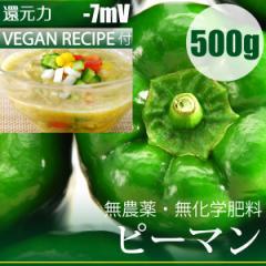 ピーマン 500g (無農薬・無肥料)千葉県産 還元力-7mV