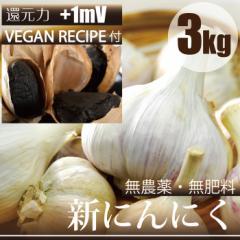 新にんにく 3kg ヴィーガンレシピ付き 熊本県産 自然栽培(無農薬・無肥料) 還元力+1mV