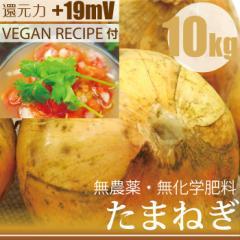 玉ねぎ10kg 無農薬・無化学肥料 ヴィーガンレシピ付き! 神奈川県産 放射性物質検査済・還元力(抗酸化力)+19mV