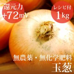 玉ねぎ 1kg ヴィーガンレシピ付き 無農薬・無化学肥料・北海道産 還元力(抗酸化力)ORP+72mV