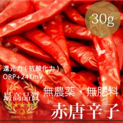 赤唐辛子トウガラシ 30g 無農薬・無肥料・香川県 ・還元力(抗酸化力)+241mV