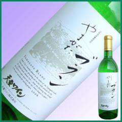 天童ワイン 山形プレミアムブラン(白やや辛口) 720ml 贈り物に ワイン 父の日 ギフト プレゼント 2019