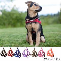犬 ハーネス 小型犬用 EZYDOG クイック ハーネス XS