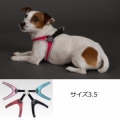 犬 ハーネス 小型犬用 トレ・ポンティ Fibbia(フィッビア) 3.5サイズ
