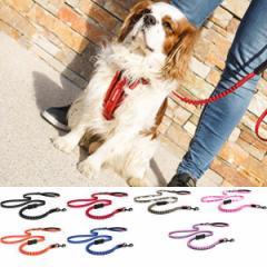 犬 リード 小型犬用 EZYDOG ゼロショックライト 120cm