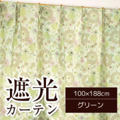 遮光カーテン/サンシェード 2枚組 【100cm×188cm グリーン】 花柄 洗える タッセル付き アジャスターフック付き 『コメット』