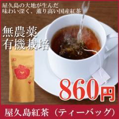 屋久島紅茶ティーバッグ(3g×12袋 )【 無農薬 有機栽培 】メール便出荷
