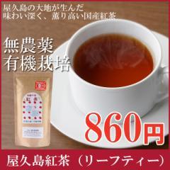 屋久島紅茶リーフティー(80g )【 無農薬 有機栽培 】メール便出荷