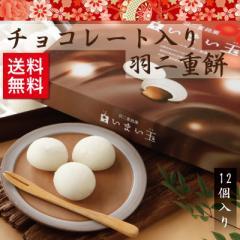 チョコレート入り羽二重餅 12個入 和菓子 福井 銘菓  お土産 スイーツ ギフト
