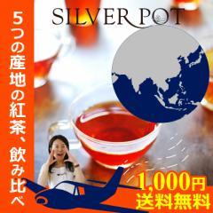 ◆11/20より発送開始(他ご注文含む)【送料無料お試し】ティーバッグ福袋「紅茶で世界旅行セット」