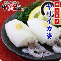 \寿司ネタ用/ヤリイカ姿(12.5g×20枚入り)【いか】【イカ】【烏賊】【イカゲソ】