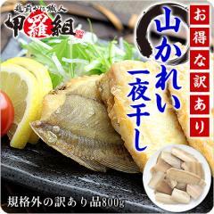 甘みある柔らかな身が絶品!日本海の山かれい一夜干し【訳あり/ぶつ切り】800g食べ放題!【山ガレイ】【やまがれい】【ヤマガレイ】