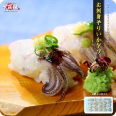 回転寿司や居酒屋に納品している【刺身用】ヤリイカゲソたっぷり20枚入り