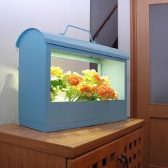 MotoM モトム Akarin05 ブルー OMA05-SB サラダ菜タネ・液体肥料・スポンジ付き ギフトにぴったりなLED 水耕栽培キット